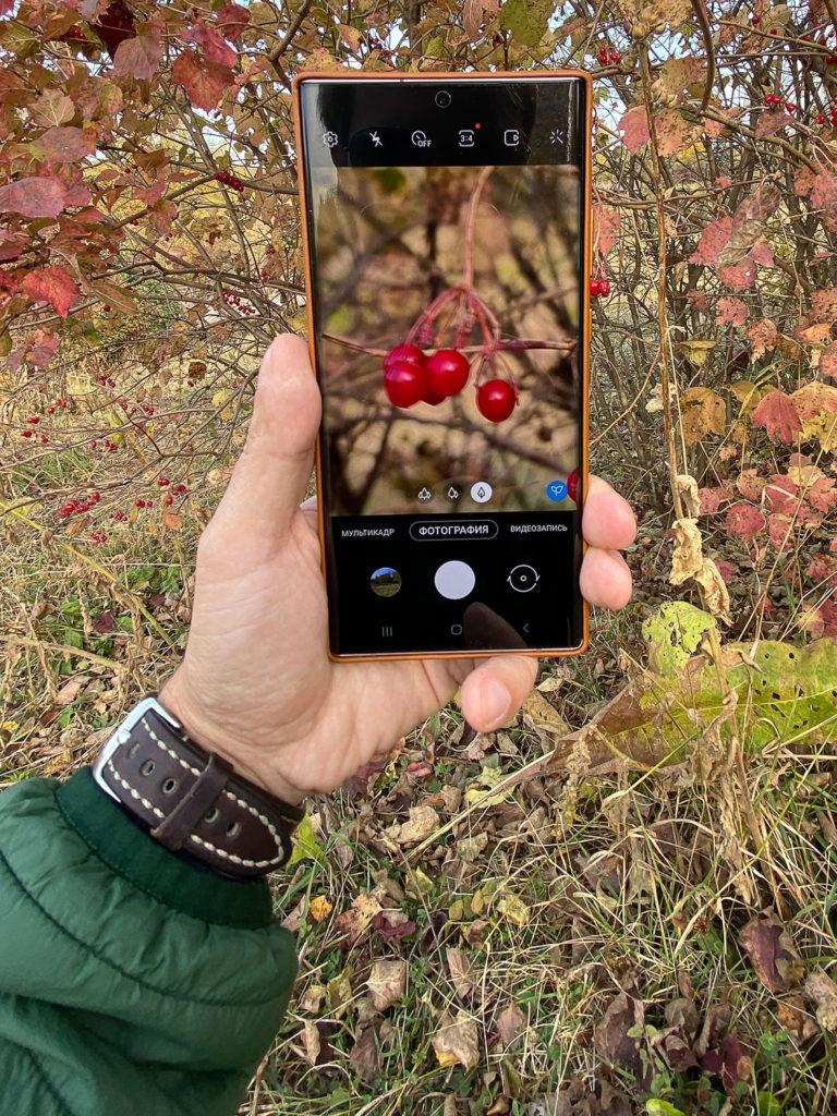 У Samsung Galaxy Note 20 Ultra отличные насыщенные снимки